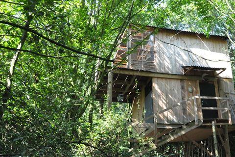 Séjourner dans une cabane dans les arbres