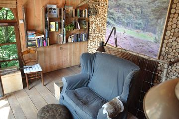 Salon de la cabane dans les arbres